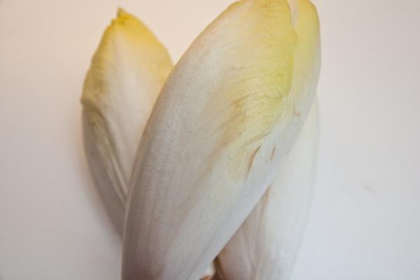 DSC 7859  Chicorée-Hackvleisch mit Bäckchenkartoffeln