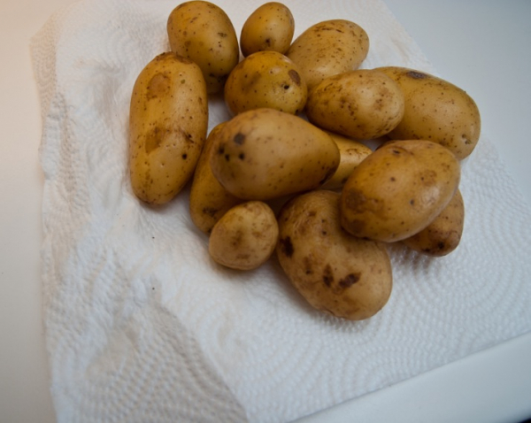 DSC 7860  Chicorée-Hackvleisch mit Bäckchenkartoffeln